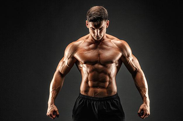 ¿Qué tan rápido crecen los músculos?